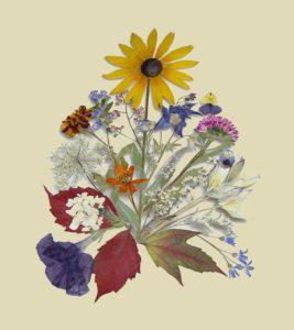 Lucille Norella - Botanical Art - Doylestown PA Traditional Artisan Show